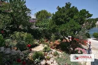 vrt2.jpg