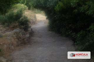 looking down path from house.jpg