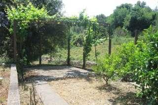 06_Garden1.jpg