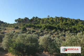 Poljoprivredno zemljište s idejnim projektom uređenja i izgradnje