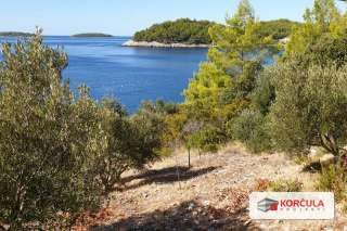 Top location: building plot on the southern coast of Korčula island, first row to the sea