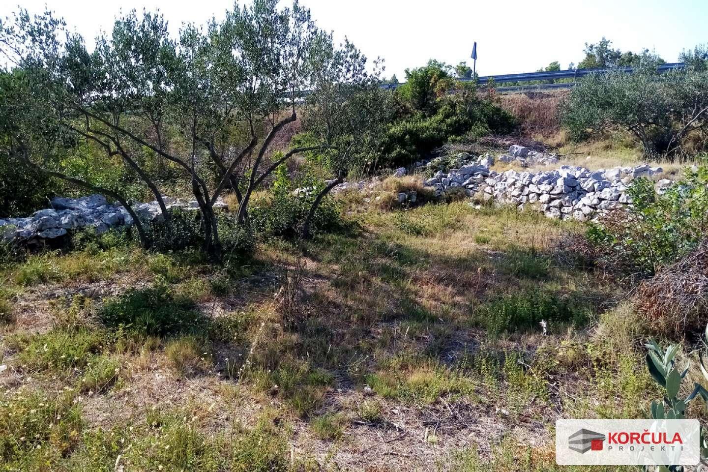 Poljoprivredna zemljišta, ravni tereni, blizina grada Korčule