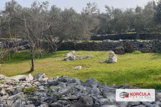Large agricultural land for sale near Vela Luka